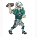 "Miami Dolphins NFL 44"" Animated Lawn Figure"