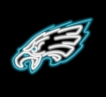 Philadelphia Eagles Commercial Grade NFL Neon Pub Sign-FREE SHIPPING