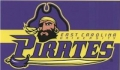 East Carolina NCAA 3 x 5 Flag by BSI Products