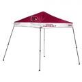 Arizona Cardinals Slant Leg Canopy Party Tent-FREE SHIPPING