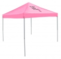 """Fight Like A Girl"" Breast Cancer Awareness Tailgating Canopy Party Tents-FREE SHIPPING"