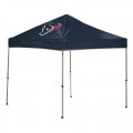 Houston Texans NFL 9 x 9 Straight Leg Canopy Tailgating Tent