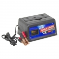 Peak 2/6 Amp Battery Charger