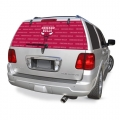 "Chicago Bulls NBA Logo """"Rearz"""" Back Windshield Covering by Glass Tatz"