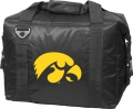 Iowa Hawkeyes NCAA 12-Pack Cooler-FREE SHIPPING