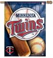 "Minnesota Twins MLB 27"" x 37"" Vertical Outdoor Flag"