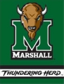 "Marshall Thundering Herd 27"" x 37"" Vertical Outdoor Flag"