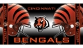 "Cincinnati Bengals 30"" x 60"" Beach Towel"