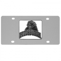 Pittsburgh Panthers NCAA Stainless Steel License Plate